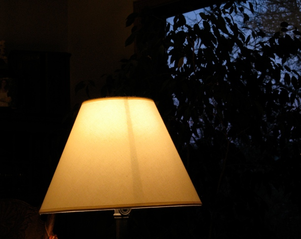Louie-the-lampshade