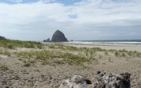 Sofia's text messages from Cannon Beach