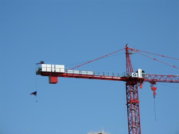 Crane-near-Sutter's-Fort