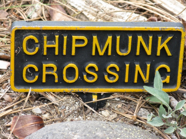 Chipmunk crossing sign
