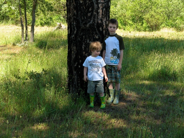 Kids-explore-a-meadow