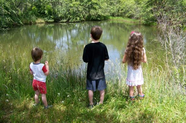 Kids-visit-a-pond