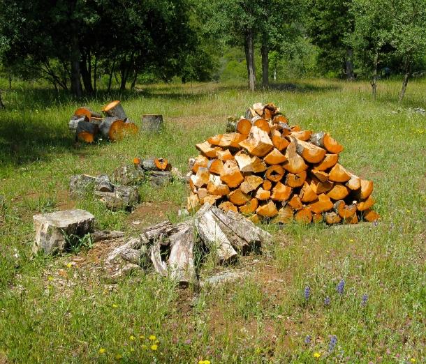 split-firewood