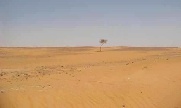 Sudan-desert