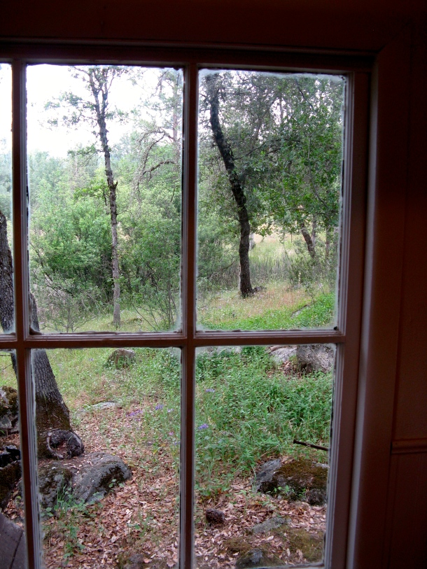 view-through-a-window.